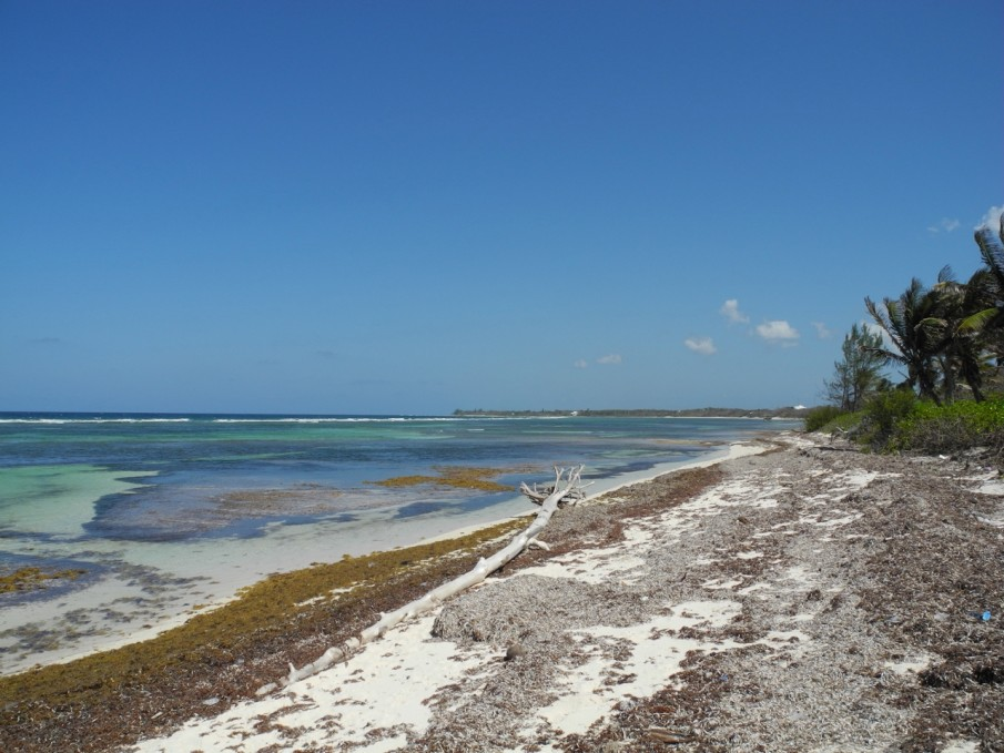RUM POINT BEACH FRONT LAND - Image 5